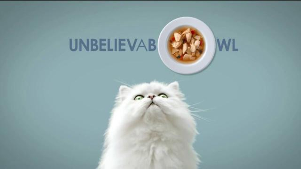 Purina Cat Food Commercial Song