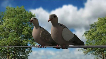 Mojo Outdoors TV Spot, 'Pigeons' - Thumbnail 2