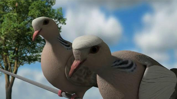 Mojo Outdoors TV Spot, 'Pigeons' - Thumbnail 4