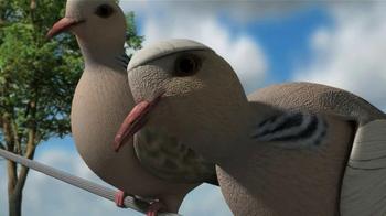 Mojo Outdoors TV Spot, 'Pigeons' - Thumbnail 5