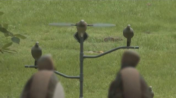 Mojo Outdoors TV Spot, 'Pigeons' - Thumbnail 6