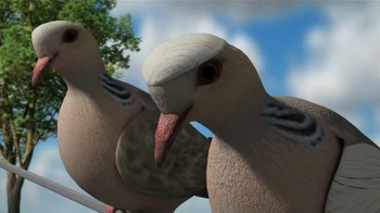 Mojo Outdoors TV Spot, 'Pigeons' - Thumbnail 7