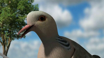 Mojo Outdoors TV Spot, 'Pigeons' - Thumbnail 9