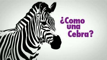 Pulmonary Hypertension Association TV Spot, 'Cebras' [Spanish]