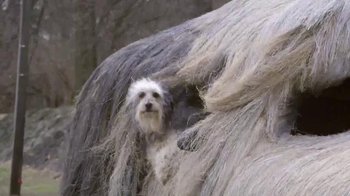 Febreze Car Vent Clips TV Spot, 'Pet Odors' - Thumbnail 5