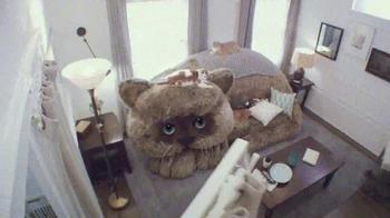 Febreze Fabric Refresher TV Spot, 'Angela's Cat' - Thumbnail 5