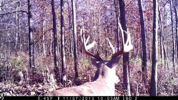 Browning Trail Cameras TV Spot, 'Faster, Smaller, Better'