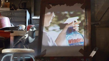 Windex TV Spot, 'Dile no a los Vidrios Limpios' [Spanish]