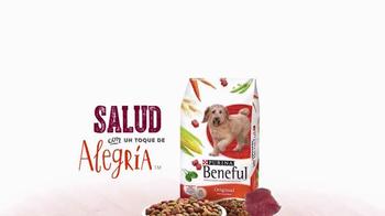 Purina Beneful Original TV Spot, 'Cena para Dos' [Spanish] - Thumbnail 9