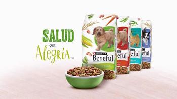 Purina Beneful Healthy Weight TV Spot, 'La Cena de Hoy' [Spanish] - Thumbnail 9