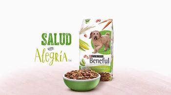 Purina Beneful Healthy Weight TV Spot, 'La Cena de Hoy' [Spanish] - Thumbnail 8