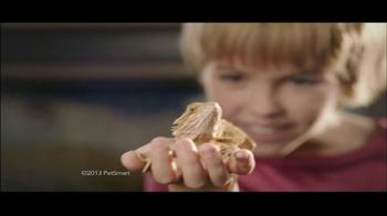 PetSmart Reptile Mega Month TV Spot - Thumbnail 3