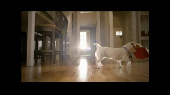 PetSmart TV Spot, 'Dog Types' - Thumbnail 6