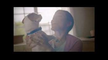 PetSmart TV Spot, 'Dog Types' - Thumbnail 7