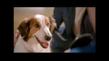 PetSmart TV Spot, 'Dog Types' - Thumbnail 9
