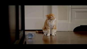 PetSmart Anniversary Sale TV Spot - Thumbnail 1