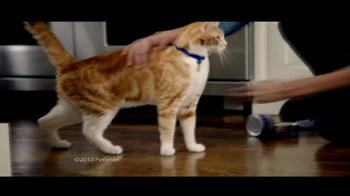 PetSmart Anniversary Sale TV Spot - Thumbnail 4