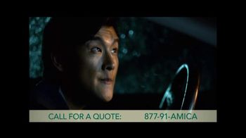 Amica TV Spot, 'Every' - 306 commercial airings