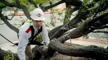 Orkin TV Spot, 'Ants in Trees' - Thumbnail 2