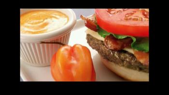 McDonald's Quarter Pounder Burgers TV Spot, 'Flavor Cravers' - Thumbnail 8