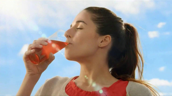 Lipton Tea and Honey TV Spot - 2035 commercial airings
