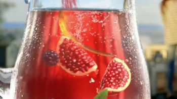 Lipton Tea and Honey TV Spot - Thumbnail 8