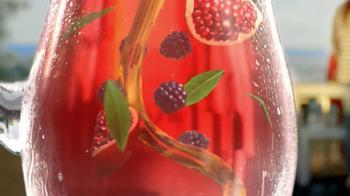 Lipton Tea and Honey TV Spot - Thumbnail 9