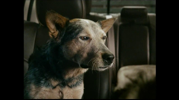 2013 Ram Laramie Longhorn TV Spot, 'Jealous Dog' - Thumbnail 7