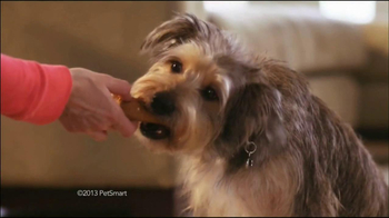 PetSmart Double Bonus Sale TV Spot, 'Purina'