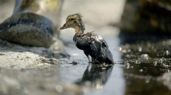 Dawn TV Spot, 'Cleaning Oil Spills' - Thumbnail 1