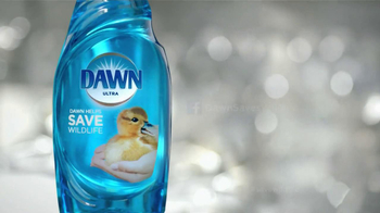 Dawn TV Spot, 'Cleaning Oil Spills' - Thumbnail 10