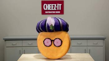 Cheez-It Zingz TV Spot, 'Puns' - Thumbnail 4