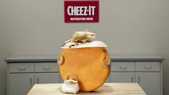Cheez-It Zingz TV Spot, 'Puns' - Thumbnail 5