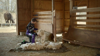 FedEx TV Spot, 'Sheep' - Thumbnail 1