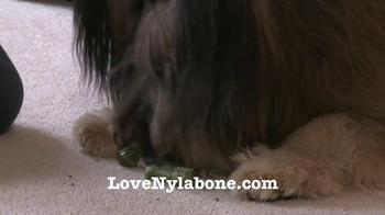 Nylabone TV Spot - Thumbnail 9