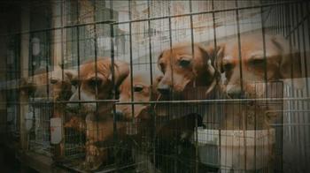 ASPCA TV Spot, 'Crying Puppies' - Thumbnail 2