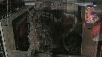 ASPCA TV Spot, 'Crying Puppies' - Thumbnail 4