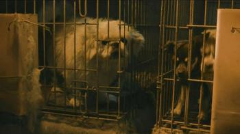 ASPCA TV Spot, 'Crying Puppies' - Thumbnail 6