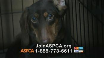 ASPCA TV Spot, 'Crying Puppies' - Thumbnail 9