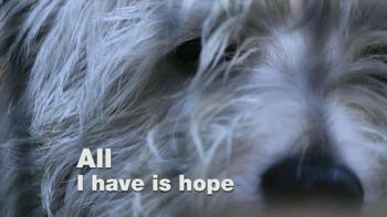 ASPCA TV Spot, 'Dogs' - Thumbnail 4