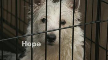 ASPCA TV Spot, 'Dogs' - Thumbnail 5