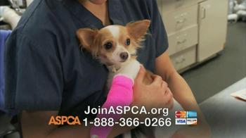 ASPCA TV Spot, 'Dogs' - Thumbnail 8