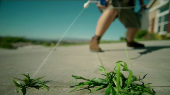 Roundup Weed & Grass Killer TV Spot, 'Sharp Shooter' - Thumbnail 7