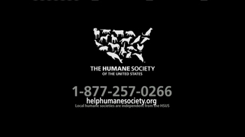 Humane Society TV Spot, 'Your Support' - Thumbnail 10