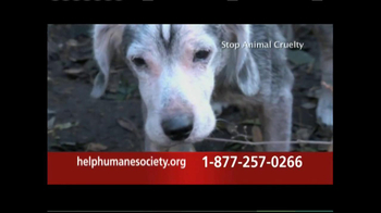 Humane Society TV Spot, \'Your Support\'