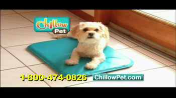 Chillow Pet TV Spot