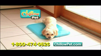 Chillow Pet TV Spot - Thumbnail 2
