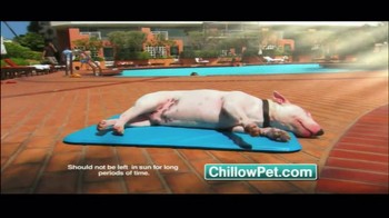 Chillow Pet TV Spot - Thumbnail 4