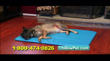 Chillow Pet TV Spot - Thumbnail 8