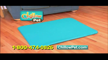 Chillow Pet TV Spot - Thumbnail 9
